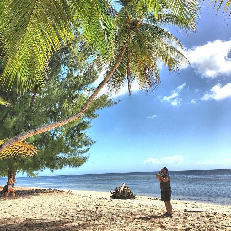 Palm trees coconuts clear seas and white sandy beaches. I've arrived in paradise. #Wakatobi @indtravel #tripofwonders #wonderfulIndonesia