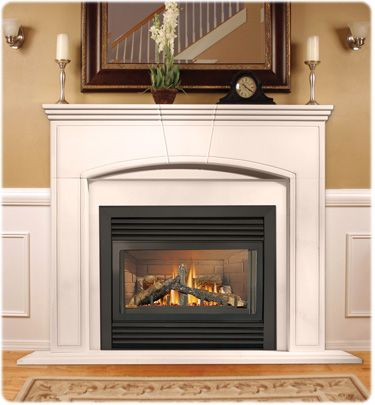 48 best Natural Gas & Propane > Zero Clearance Direct Vent images ...