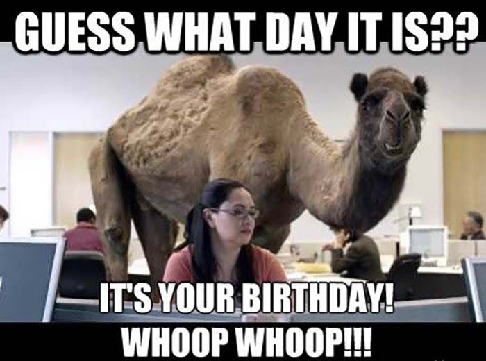 30 Hilarious Birthday Memes For Your Sister Sayingimages Com Funny Happy Birthday Meme Happy Birthday Brother Funny Birthday Brother Funny