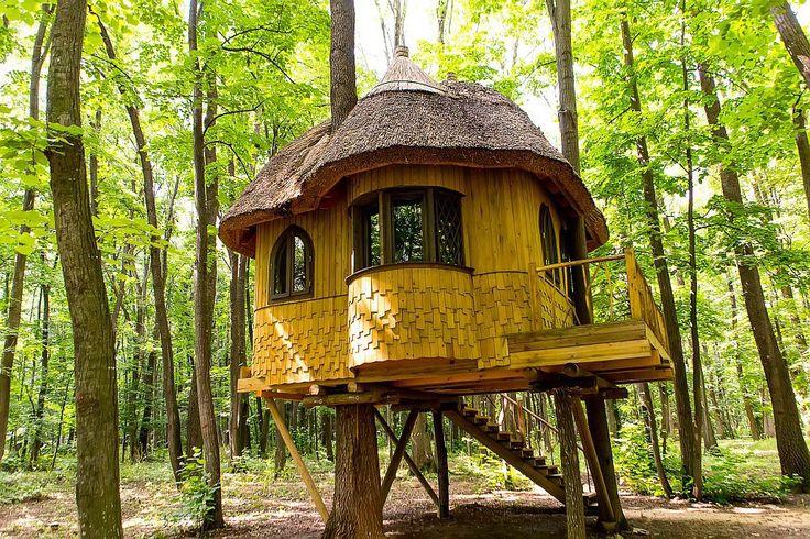 Edenland - Loc de evadare la doar 20 de km de București cu parc de aventură și căsuțe în copaci