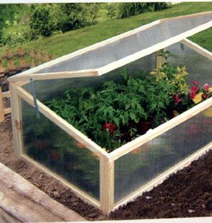 Portable greenhouses. Great idea if you can't afford to built a normal size one!