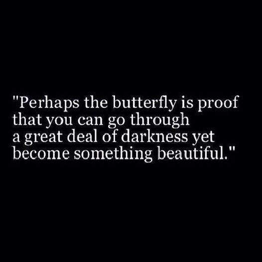Perhaps the butterfly is proof that you can go through a great deal of darkness, and yet become something beautiful.