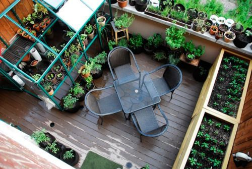 Roof top vegetable gardens in containers, New York.