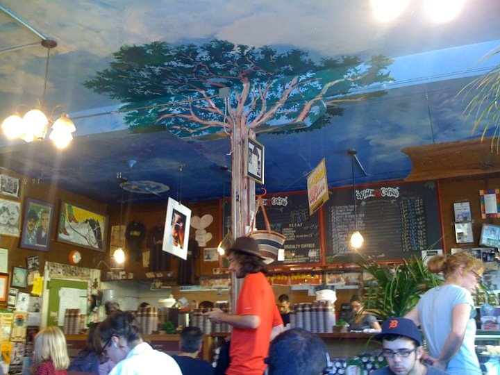 Philz on 24th in the Mission District. : Strong Cups, San, Awesome Interiors, Order Codes, Francisco Finding, Cup Of Coffee, Mission District, Interiors Decor, Cups Of Coffee