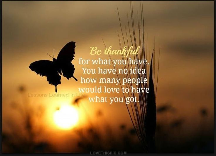 be thankful life quotes quotes positive quotes quote sunset life quote thankful butterrfly