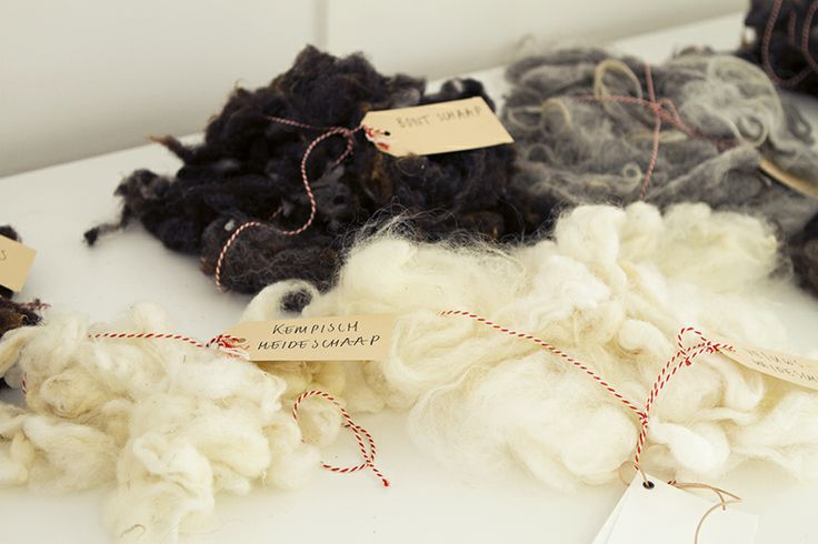 0304 EXPOSITION – WOOL