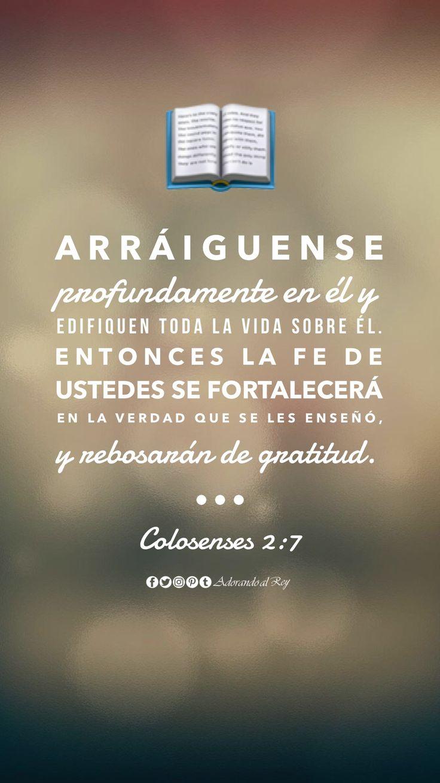 """""""Arráiguense profundamente en él y edifiquen toda la vida sobre él. Entonces la fe de ustedes se fortalecerá en la verdad que se les enseñó, y rebosarán de gratitud."""" Colosenses 2:7 #Biblia #CitasBiblicas #AdorandoalRey"""
