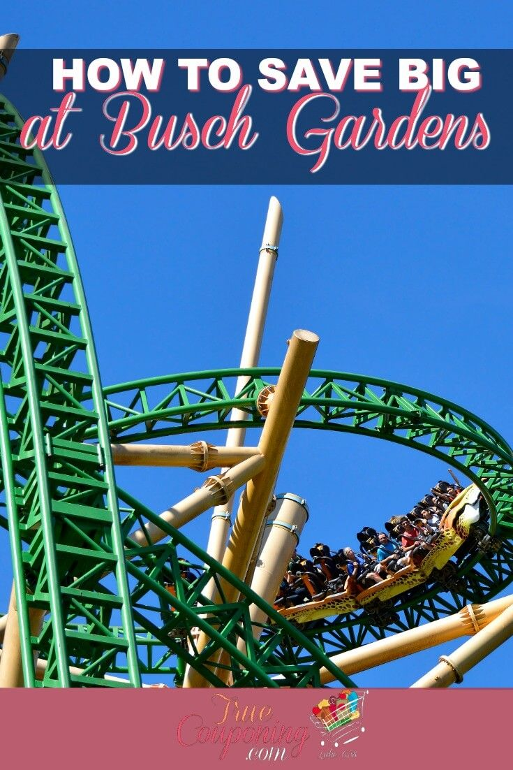 How Much Is A One Day Ticket For Busch Gardens