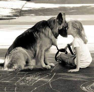 awww reminds me of my German Shepard and me
