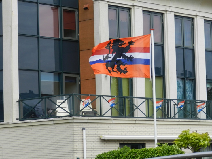 Combination of Orange (the color of the Netherlands) with our national colors Red White and Blue & our Dutch lion