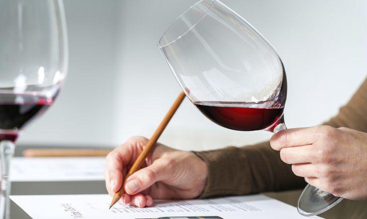 Episodio 63. Puntuaciones de vino | Vino Para Principiantes