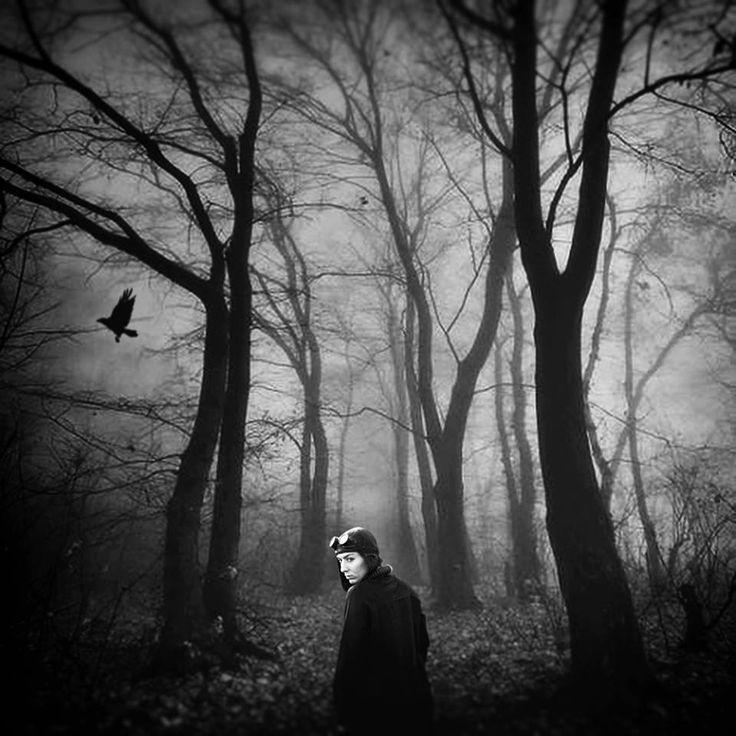Samotność, prawdziwa samotność bez złudzeń, to stan poprzedzający obłęd lub samobójstwo. [Erich Maria Remarque]