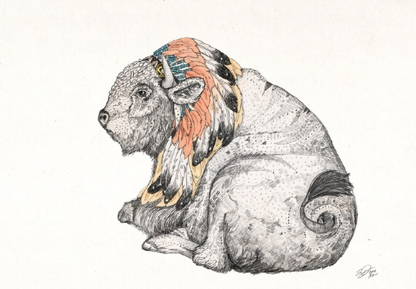 white buffaloSpirit Animal, Drawing Inspiration, Animal Art, Lounges Bisons, White Bisons, Artists Inspiration, Traditional Illustration, Sandra Dieckmann, Native American