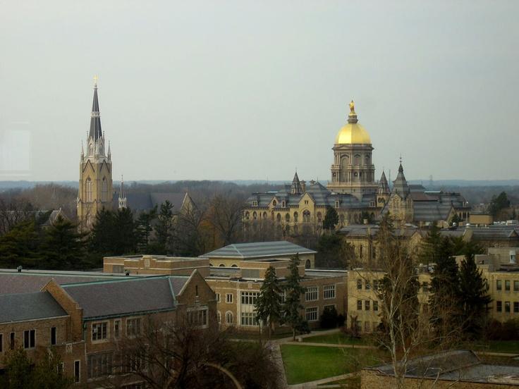 University of Notre Dame: Dame Fan, Domer Fan, Dreams Hopes, Favorite Places, Fighting Irish, American Dreams