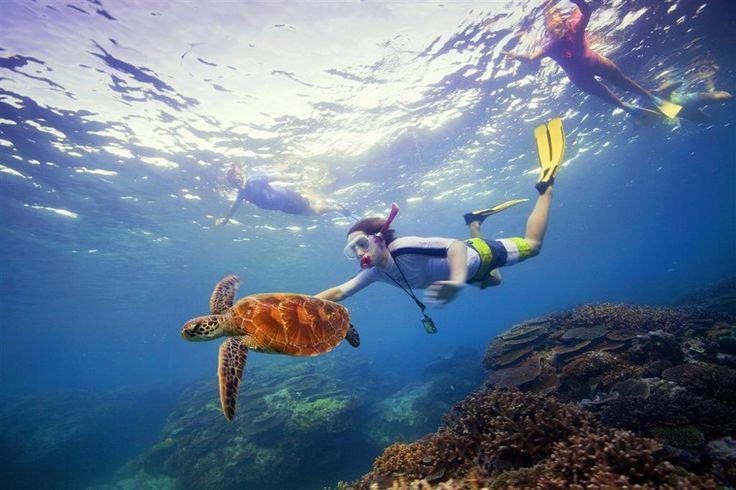 Queensland, Australia #Travel #DownUnder #Vacation