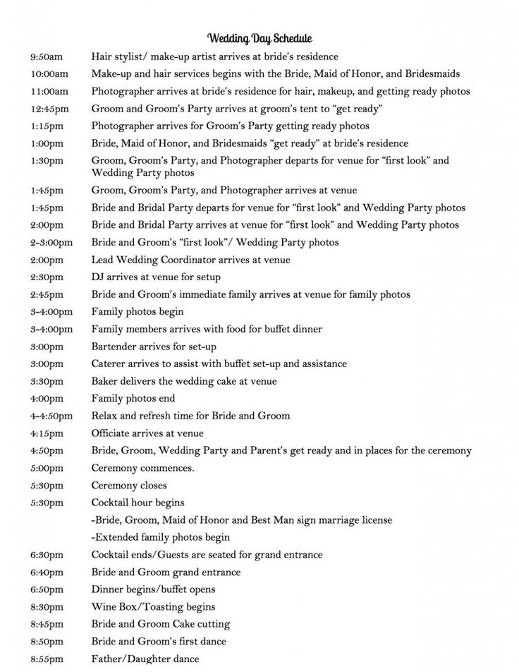 Wedding Agenda Sample Sample Checklist Plan Wedding Plan Examples