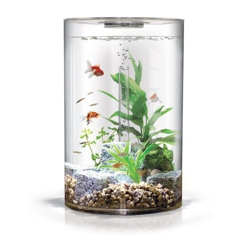 biUbe Pure Aquarium: Offering a stunning 360 degree view, this sleek, modern 9 gallon aquarium comes with everything you need and is perfect for smaller spaces like an apartment, office or bedroom. It features crystal clear acrylic construction, a nearly invisible slim-line lid, an advanced filter cartridge system and an advanced slimline Intelligent LED Light that provides an automatic 24 hour lighting cycle that includes a natural gradual sunrise, sunset and blue moonlight.