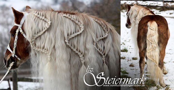 The Mane Event…  Have you attempted any designs like this in your horse's mane and tail… or are you happy just to get all the tangles out…?  Photo by Kohlfuchshaflinger Liz. Steiermark  www.cowboymagic.com
