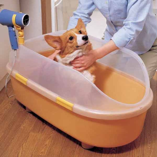 17 best images about dog bathtub on pinterest shops stainless steel and pets. Black Bedroom Furniture Sets. Home Design Ideas