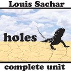 best teaching holes by louis sachar images louis  holes unit teaching package %28by louis sachar%29%