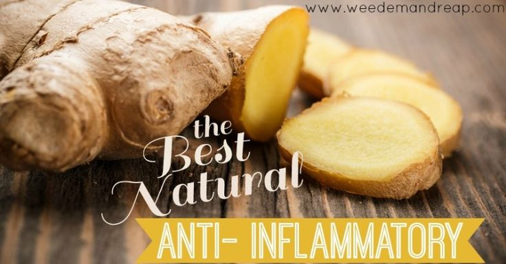 The BEST Natural Anti-Inflammatory is Ginger.  If you don't like the taste, this article has the BEST solution to take fresh Ginger.  Powdered ginger capsules can't compete with the fresh stuff.