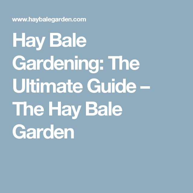 Hay Bale Gardening:      The Ultimate Guide – The Hay Bale Garden