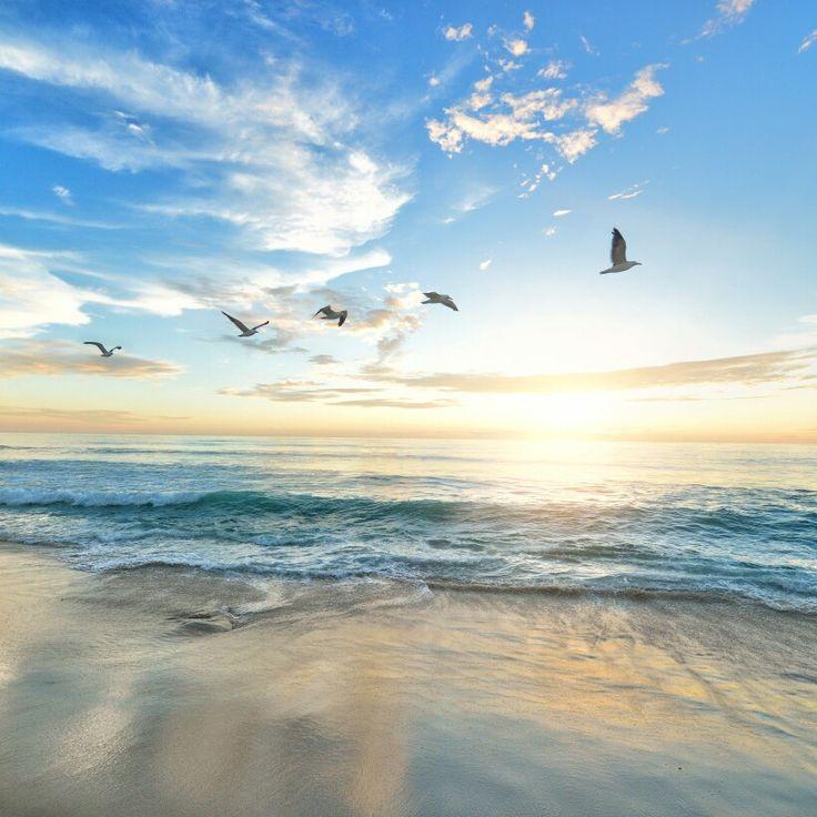 Algarve beach moments