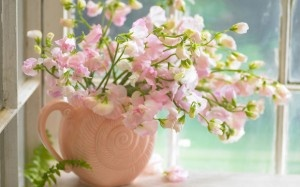 There must be flowers.: Pink Flowers, Beautiful Flowers, Wallpapers, Garden, Sweet Peas, Pretty, Floral