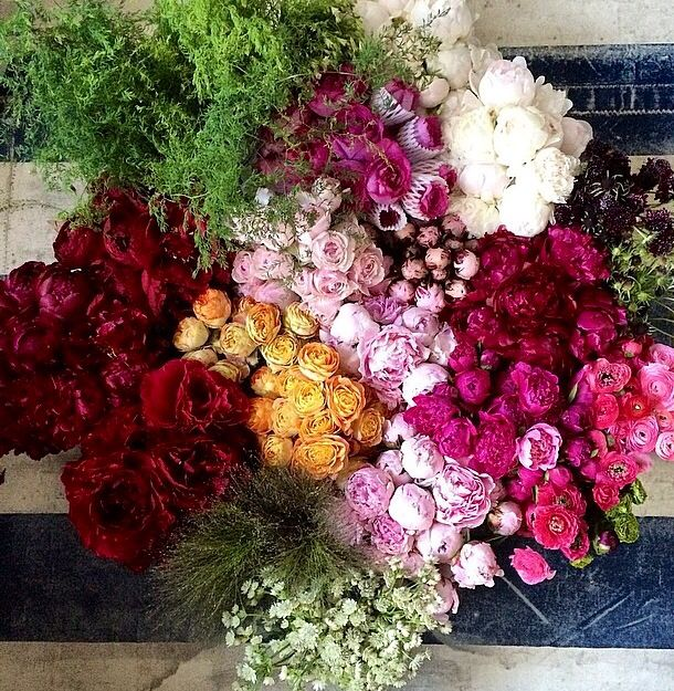 17 Best images about Blooms. on Pinterest | Mercury glass, Flower ...