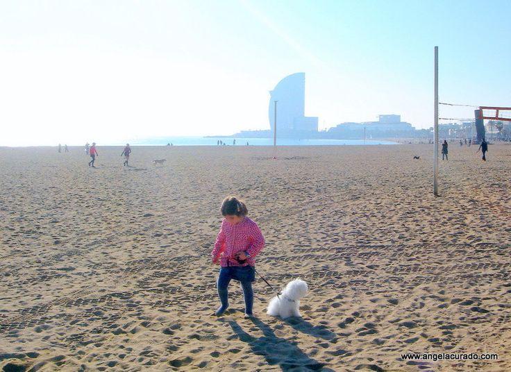 https://flic.kr/p/Dq3Nqr | Yuri on the beach.