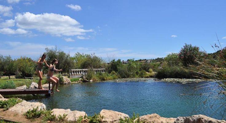 Alojamentos com piscinas biológicas