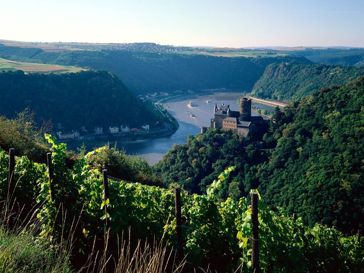 View above the Rhine river  images of germany - Bing Images