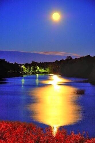 Good night nature pinterest - Good night nature pic ...
