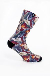 Pacifico Maui Socks