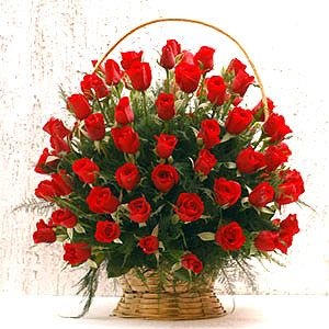 Valentine's Day flowers can be sent now very easily just by booking the services on our website. The booking procedure requires you to choose the relevant flower that you want to send and pay for it with your debit, credit or paypal account.  http://flowershop18.in/flowers-to-valentine-day.aspx