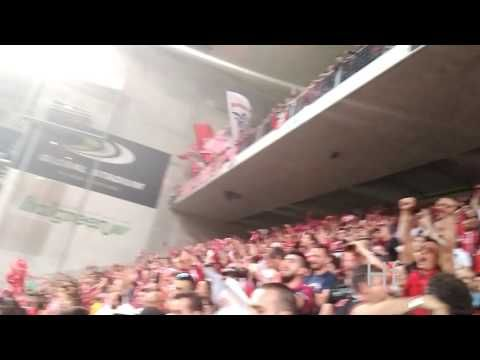 Benfica | Golo Mitroglou - Visto da bancada