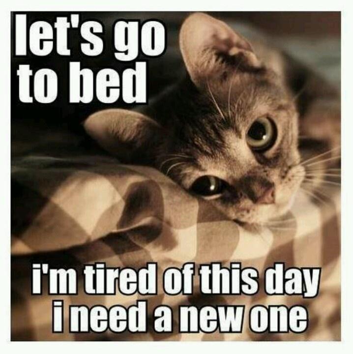Vámonos a dormir. Estoy cansada de este día. Necesito uno nuevo. Lo he pensado más veces de las que me gustaría.