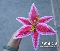 Tutorial: stargazer lily