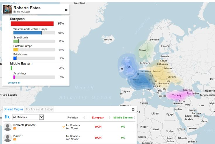 Ethnicity Testing and Results - I have written repeatedly about ethnicity results as part of the autosomal test offerings of the major DNA testing companies, but I still receive lots of questions about which ethnicity test is bes...