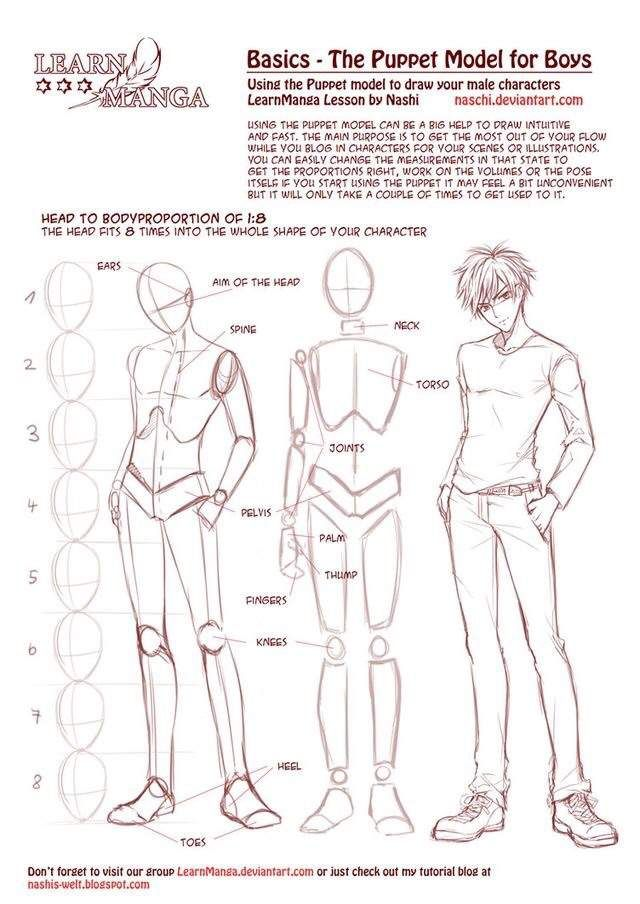 Image result for male anatomy drawing | Drawing | Pinterest ...