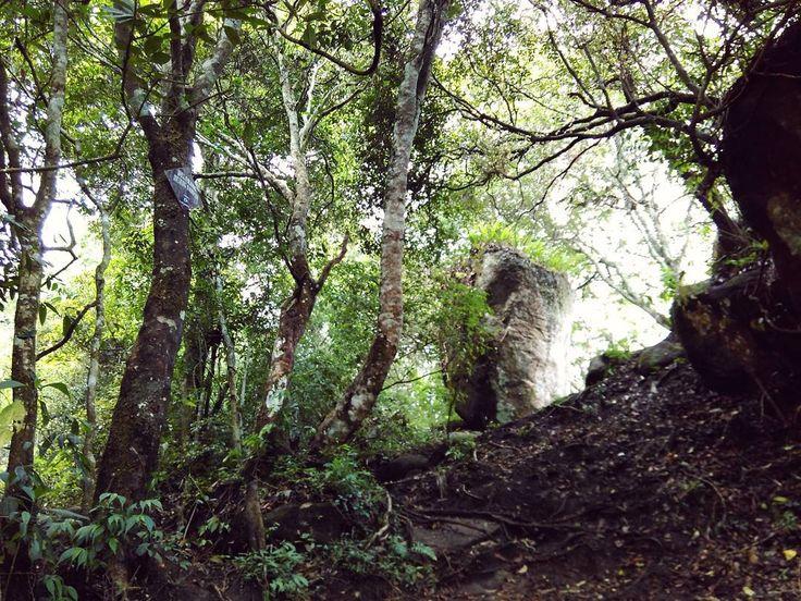 """Sang batu #hiking #justwalk"""