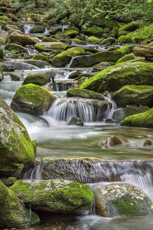 This photograph was taken at one of the many streams in the Smoky Mountains in a section of the park called Cades Cove. The Smoky Mountains borders Tennessee and North Carolina and are part of the Appalachian Mountains. #photography #smokeymountains  #homedecor #streams