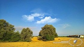 Textures Summer countryside landscape 20802 | Textures - BACKGROUNDS & LANDSCAPES - NATURE - Countrysides & Hills | Sketchuptexture
