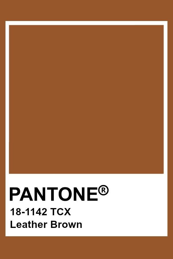 Pantone Leather Brown Pantone Orange Pantone Pantone Swatches