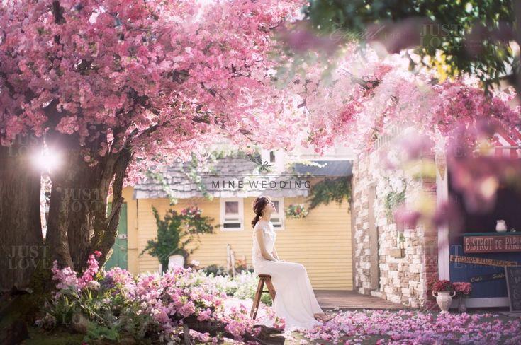 Korea Pre Wedding Gaeul Studio Sample (71)