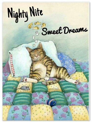 Good night, my Pin Pal