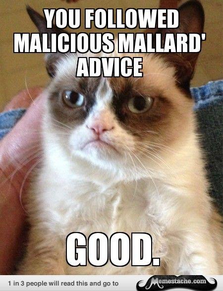 Grumpy Cat: You Followed Malicious Mallard Advice...