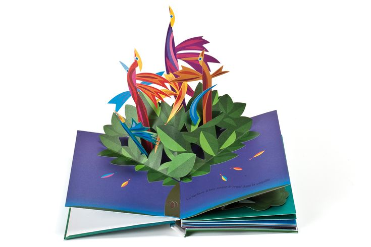 """""""Drôle d'oiseau"""" magnifique livre """"pop-up""""."""