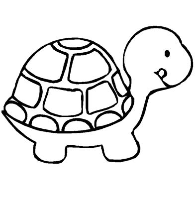 111 best la tortuga images on Pinterest | Del mar, Kindergarten and ...