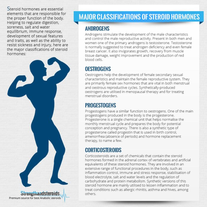009 Major Classifications of Steroid Hormones Steroid hormone